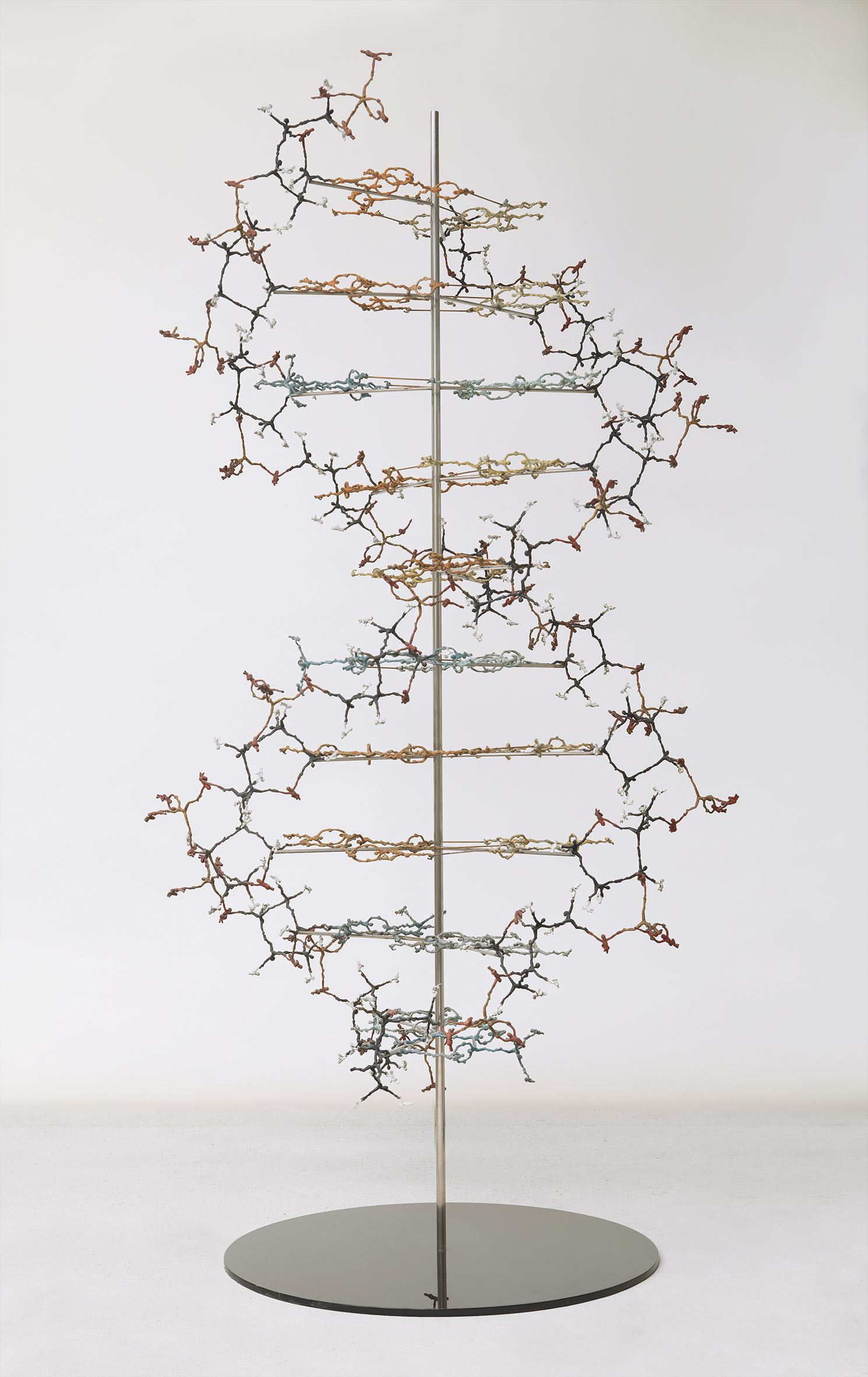 DNA - Helix of Life - 2013 Bronze